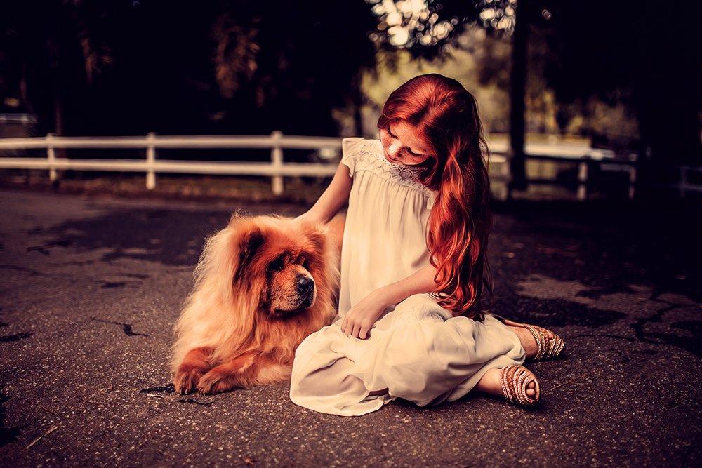 bambini e cani in sicurezza